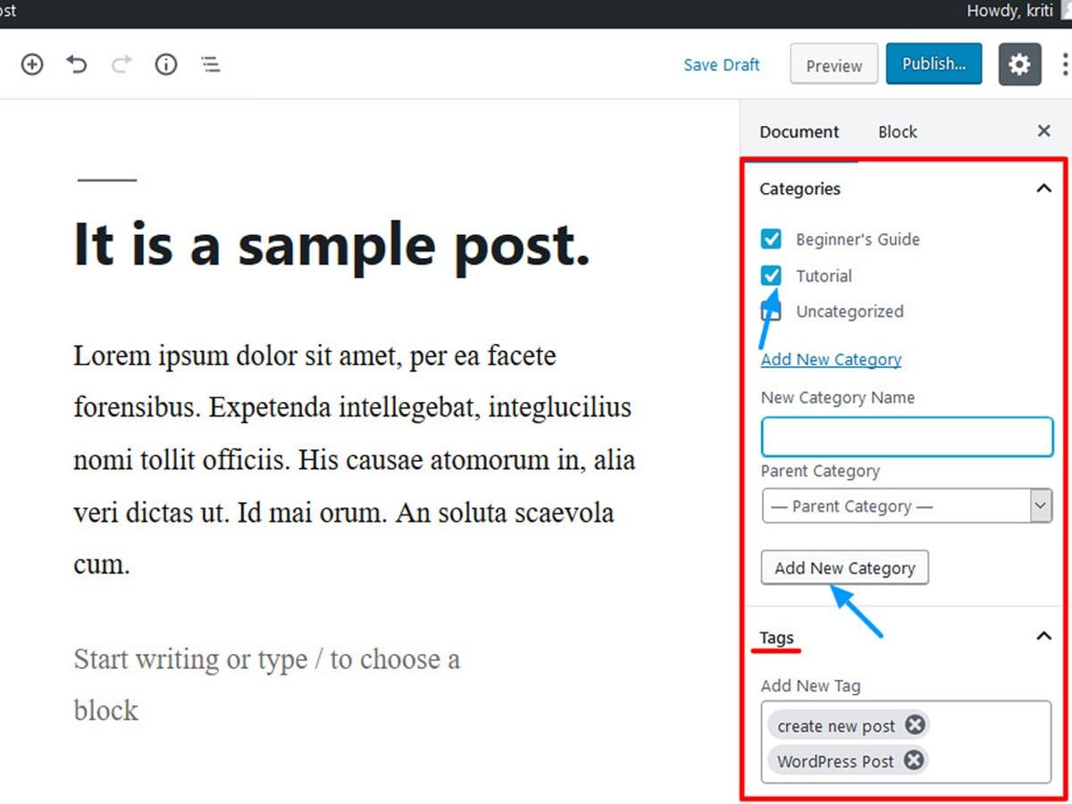 add-category-and-tags-in-WordPress