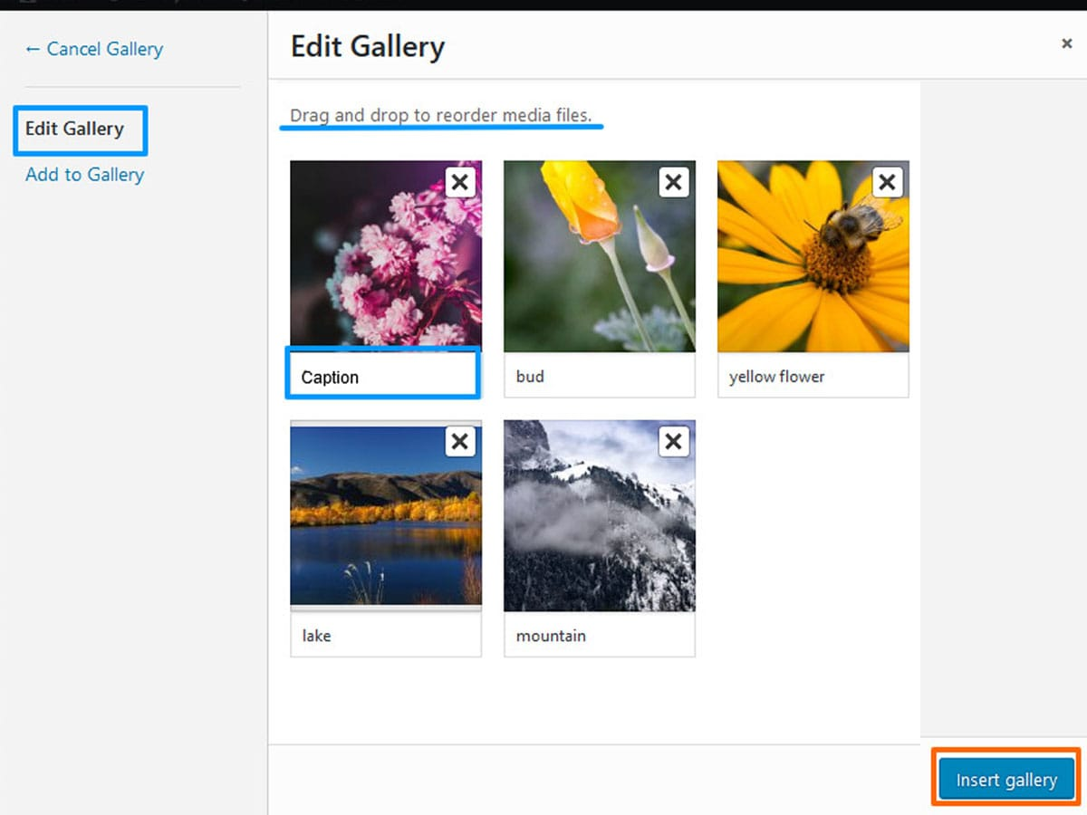 Edit-gallery-in-WordPress