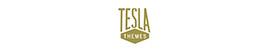 TeslaThemes - XMAS 33% OFF