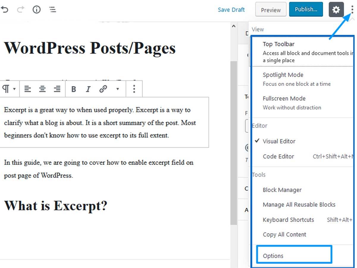 WordPress-Excerpt