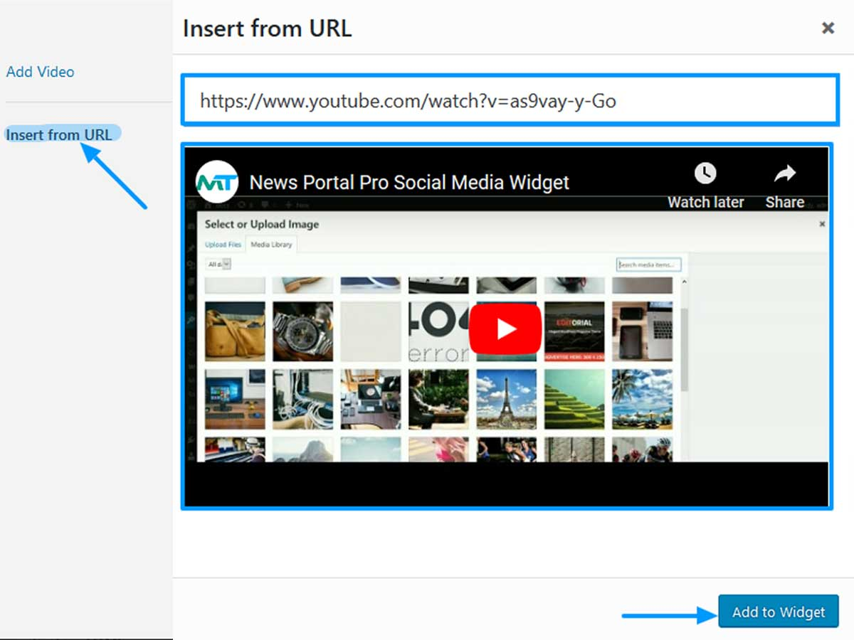 Insert-Video-from-URL