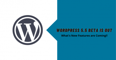 WordPress 5.5 is Out – What's New Features are Coming!!